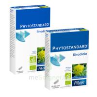 Pileje Phytostandard - Rhodiole 20 Gélules Végétales à Seysses