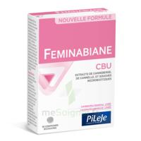 Pileje Feminabiane Cbu 30 Comprimés Bicouches à Seysses
