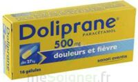 DOLIPRANE 500 mg Gélules B/16 à Seysses