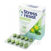 Stress Resist Comprimés Stress & Fatigue B/30 à Seysses