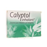 CALYPTOL INHALANT, émulsion pour inhalation par fumigation à Seysses