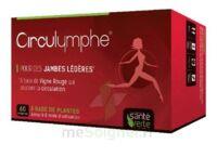 Santé Verte Circulymphe Triple Actions B/60 à Seysses