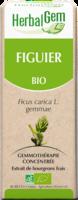 Herbalgem Figuier Macerat Mere Concentre Bio 30 Ml à Seysses