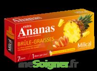 MILICAL ANANAS BRULEUR DE GRAISSE à Seysses