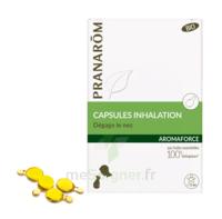 Aromaforce Caps Inhalation Bio B/15 + Inhalateur à Seysses