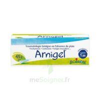Boiron Arnigel Gel T(alumino-plastique)/45g à Seysses