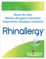 Boiron Rhinallergy Comprimés B/40 à Seysses