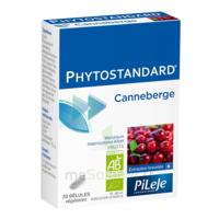 Pileje Phytostandard - Canneberge 20 Gélules Végétales à Seysses